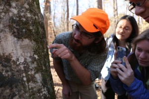 Ian Medeiros (in blaze orange hat) points out an arthropod of some kind which is either mimicking a lichen or has camouflaged itself with actual lichen tissue